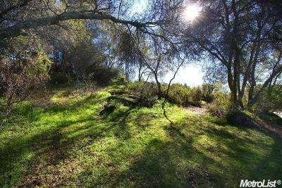 Granite Bay Residential Lots & Land For Sale: 5989 Alta Loma Court