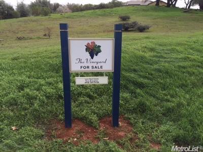 Auburn Residential Lots & Land For Sale: 2560 Vineyard Drive
