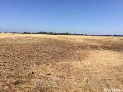 Yuba County Commercial Lots & Land For Sale: 2600 Erle Road
