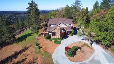 Pioneer Single Family Home For Sale: 16771 South View Drive
