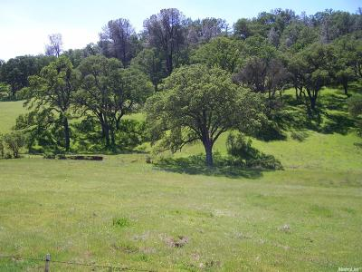 Amador County Commercial Lots & Land For Sale: 4471 Buena Vista Road