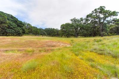 El Dorado Hills Residential Lots & Land For Sale: 6551 Goya Way