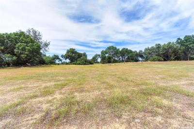 El Dorado Hills Residential Lots & Land For Sale: 3524 Greenview Drive