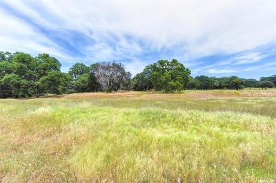 El Dorado Hills Residential Lots & Land For Sale: 353 El Greco Court