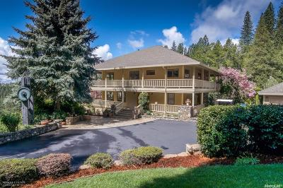 Nevada City Single Family Home For Sale: 12947 Willow Valley Road