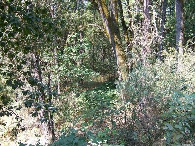 Placerville Residential Lots & Land For Sale: 4560 Pretty Good Road