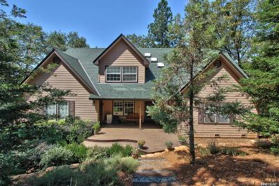 Placerville Single Family Home For Sale: 5120 Raven Lane