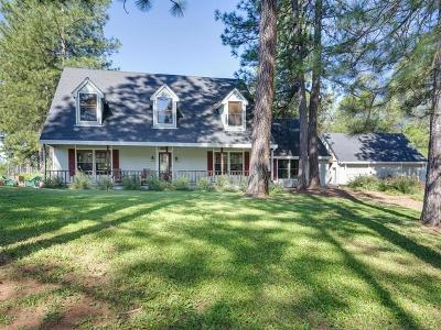 Fiddletown Single Family Home For Sale: 17476 Fiddletown Road