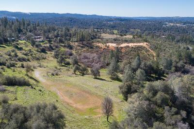 Placerville Residential Lots & Land For Sale: 3461 Coon Hollow Road