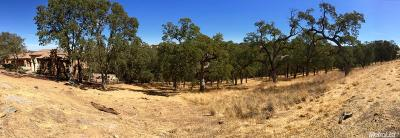 El Dorado Hills Residential Lots & Land For Sale: 4934 Breese Circle