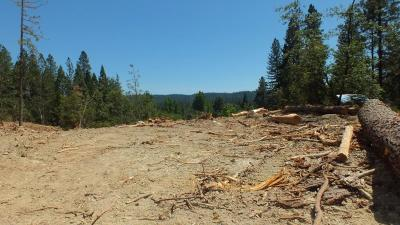 Nevada County Residential Lots & Land For Sale: 674 E.broad Street