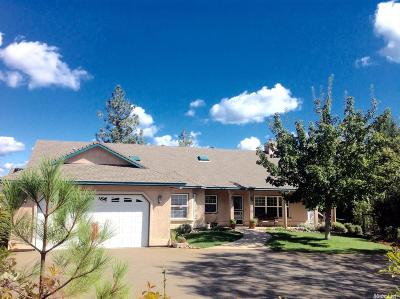 Colfax Single Family Home For Sale: 260 Twin Pines