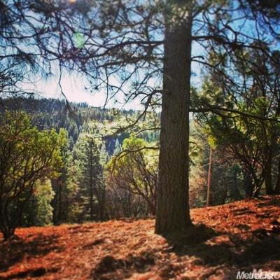 Pollock Pines Residential Lots & Land For Sale: 5200 Shooting Star Road