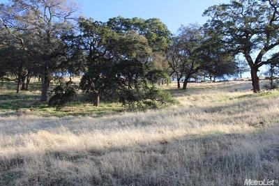 Folsom Residential Lots & Land For Sale: 462 Rockport Circle