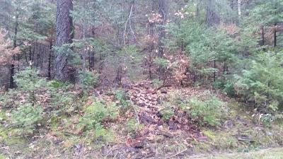Pollock Pines Residential Lots & Land For Sale: Mill Run