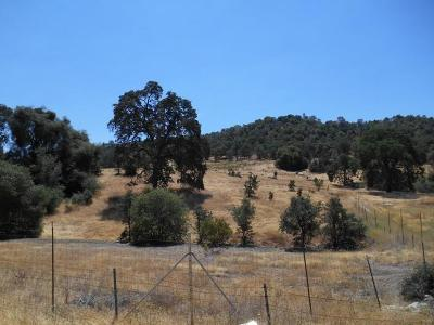 Amador County Residential Lots & Land For Sale: 14500 Shenandoah Road