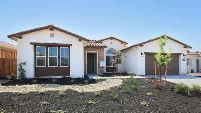 Lincoln Single Family Home For Sale: 3454 Paseo Mira Vista