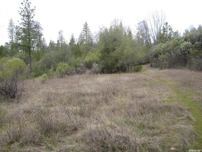 Placerville Residential Lots & Land For Sale: 6451 East Running Springs Road