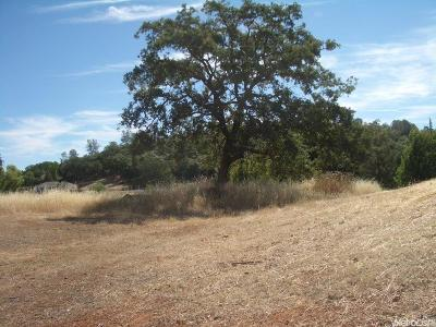Cool Residential Lots & Land For Sale: 1852 American River Trail