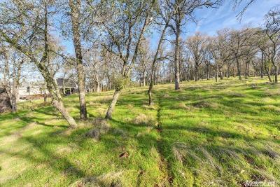 El Dorado Hills Residential Lots & Land For Sale: 5250 Da Vinci Drive