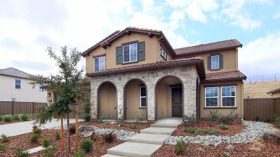 El Dorado Hills Single Family Home For Sale: 3522 Terra Alta Drive