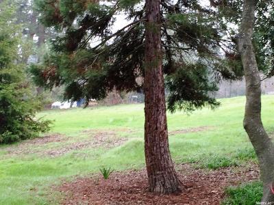 Fair Oaks Residential Lots & Land For Sale: 4449 Sierra View Way