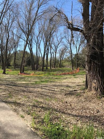 Loomis Residential Lots & Land For Sale: 6240 Wells Avenue