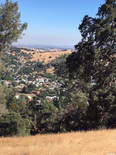 Amador County Commercial Lots & Land For Sale: 12541 Old Ridge Rd