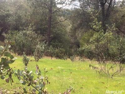 Diamond Springs Residential Lots & Land For Sale: Gold Creek Ln.