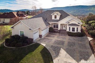 Copperopolis Single Family Home For Sale: 2100 Oak Creek Drive