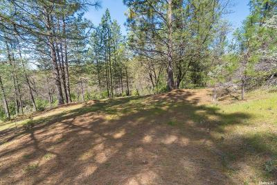 Placerville Residential Lots & Land For Sale: Combo Court