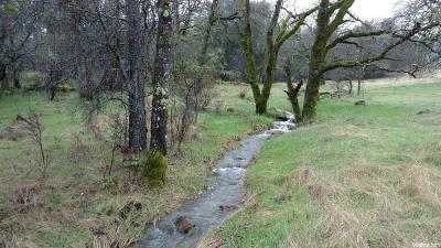 Yuba County Residential Lots & Land For Sale: Marysville Road