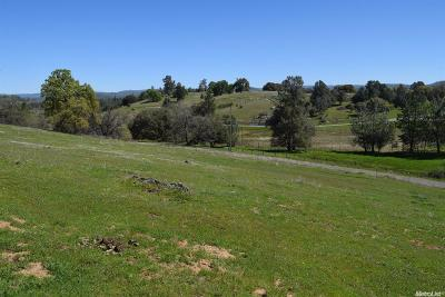 El Dorado County Commercial Lots & Land For Sale: Dorado