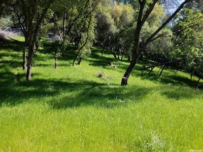 El Dorado Hills Residential Lots & Land For Sale: 392 Guadalupe Drive