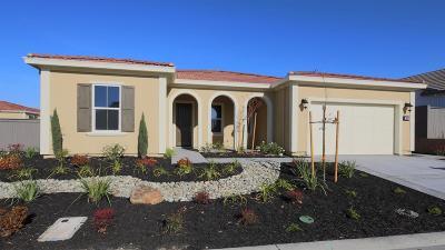 Lincoln Single Family Home For Sale: 200 Corte Colinas Verdes