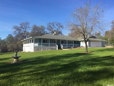 Bangor, Berry Creek, Chico, Clipper Mills, Gridley, Oroville Single Family Home For Sale: 4507 Olive Hwy