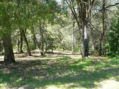 Amador County Residential Lots & Land For Sale: 18351 View Circle