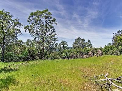 Placerville Residential Lots & Land For Sale: 1250 Burnt Shanty Creek Road
