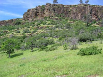 Chico Residential Lots & Land For Sale: Rim View Drive