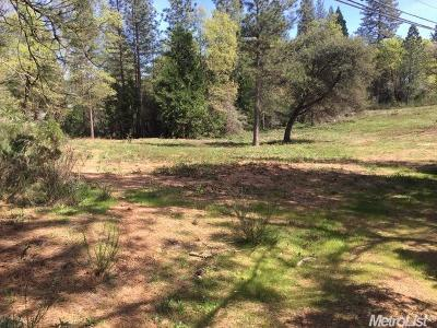 Georgetown CA Commercial Lots & Land For Sale: $79,000