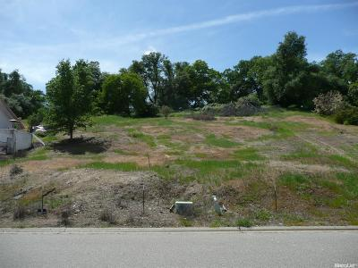 Cameron Park Residential Lots & Land For Sale: 2630 Bertella Road