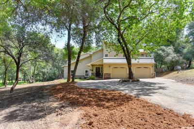 Shingle Springs Single Family Home For Sale: 5781 Saddlehorn Road