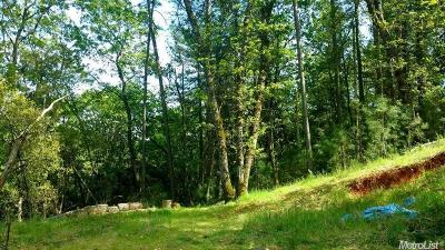 Nevada County Residential Lots & Land For Sale: 16038 Annie Drive