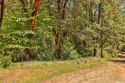 Placerville Residential Lots & Land For Sale: 3266 Holiday Lane