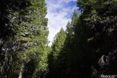 Nevada County Commercial Lots & Land For Sale: 11316 Hidden Mine Lane