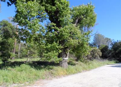 Diamond Springs Residential Lots & Land For Sale: 10 Tullis Mine Road