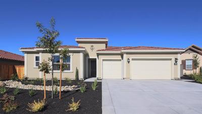 Lincoln Single Family Home For Sale: 218 Corte Colinas Verdes