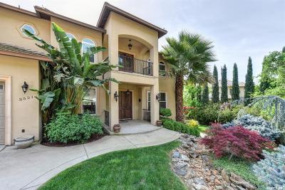 El Dorado Hills Single Family Home For Sale: 3521 Park Drive
