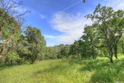 Placer County Commercial Lots & Land For Sale: 5050 Garden Bar Road