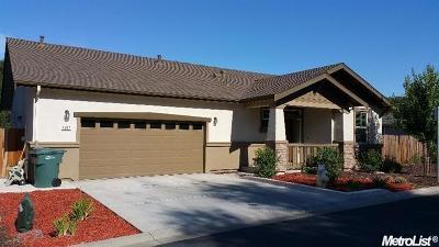 Fair Oaks Single Family Home For Sale: 4022 Braxton Lane